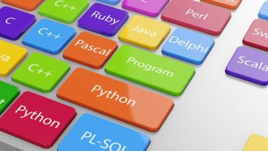 Photo of The Different Sorts of Programming Languages – Discover the Basics
